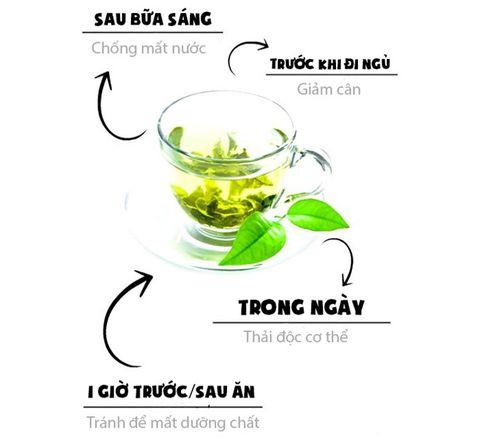 thời điểm thích hợp uống trà xanh thái nguyên